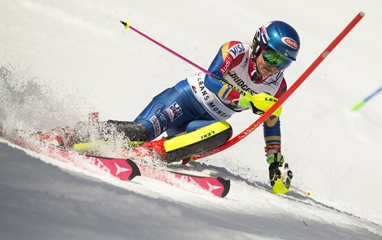Shiffrin 1